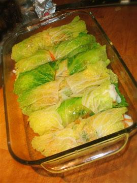 Irish cabbage 6
