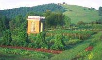 Monticello vegetable 1