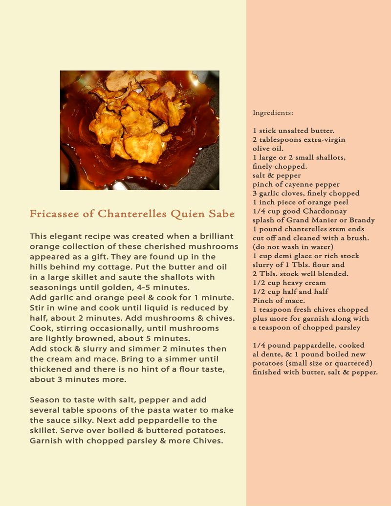 Proposal Book Recipe Fricassee Chanterelles